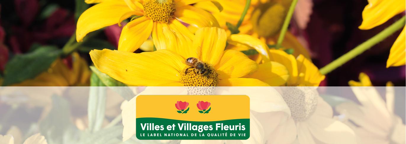 Récemment, la Région Grand Est vient de reconnaitre les progrès de la Ville de Tomblaine dans le domaine environnemental en lui attribuant son prix Régional avec deux fleurs, ainsi que le prix « spécial coup de cœur 2019 » de la région.